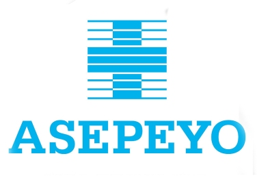 https://www.asepeyo.es/